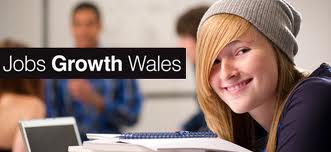Trainee Web Marketer Position available at Livetech through the Go Wales Scheme