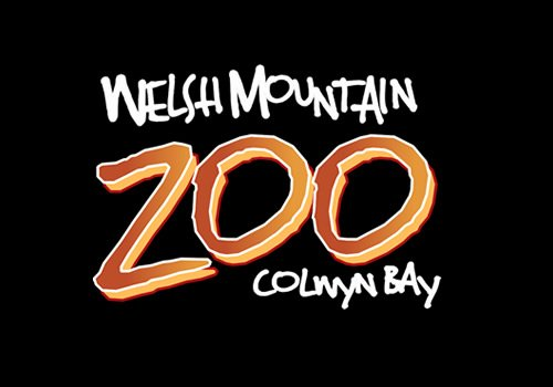 Welsh Mountain Zoo on Ipad