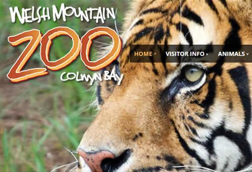 Zoo Website Screen Shot