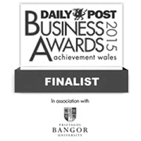 Daily Post Business Awards 2015